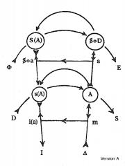 Privat: Graf des Begehrens, Teil 2 (4 Versionen)