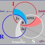 Borromäischer Knoten - gepl√§ttet - Seminar 22
