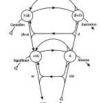 Graf des Begehrens, Schriften II, S. 193