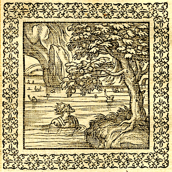 Andreas Alciato - Avaritia Tantalus - Emblematum liber 1577